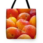 Plums Tote Bag by Elena Elisseeva
