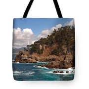 Point Lobos Tote Bag