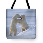 Polar Bear Males Sparring Churchill Tote Bag