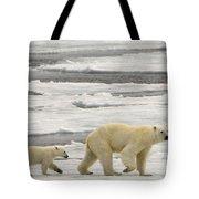 Polar Bear With Cub Tote Bag