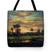 Pond At The Edge Of A Wood Tote Bag