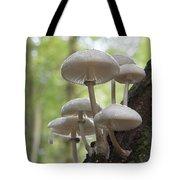 Porcelain Fungus Tote Bag