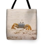 Portrait Of A Ghost Crab Tote Bag