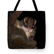 Possum Tote Bag