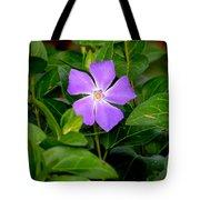 Pretty Purple Pinwheel Tote Bag