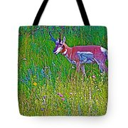 Pronghorn Among Wildflowers In Custer State Park-south Dakota Tote Bag
