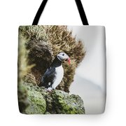 Puffins On The Islet Of Mykines, Faroe Tote Bag