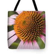 Purple Cone Flower Echinacea Tote Bag