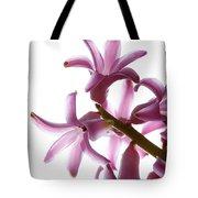Purple Hyacinth Macro Shot. Tote Bag