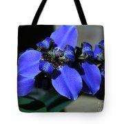 Purple Iris 2 Tote Bag