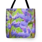 Purple Lupine Flowers Tote Bag