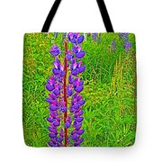 Purple Lupine On Campobello Island-nb Tote Bag