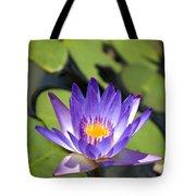 Purple Waterlily Tote Bag