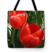 Radiant In Red - Tulips Tote Bag