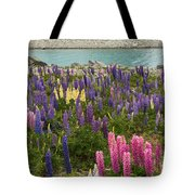 Rainbow Of Color Tote Bag