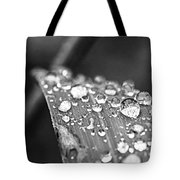 Raindrops On Grass Blade Tote Bag