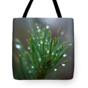 Raindrops On Pine Tote Bag
