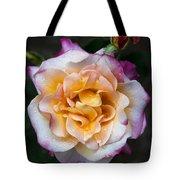 Raindrops On Rose Flower Tote Bag