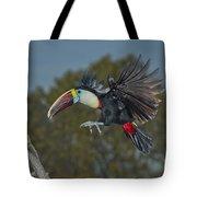 Red-billed Toucan Tote Bag