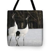 Red-crowned Cranes Courting Tote Bag