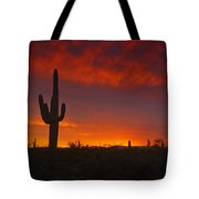 Red Desert Skies  Tote Bag