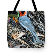 Red-faced Warbler At Nest With Young Tote Bag