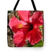 Red For Love Tote Bag
