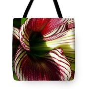 Red Striped Lily Tote Bag