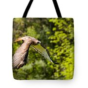 Red Tailed Hawk Tote Bag