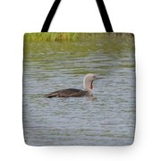 Red-throated Loon Tote Bag