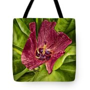 Red Tropical Tree Flower Tote Bag
