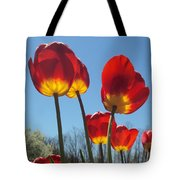 Red Tulips With Blue Sky Background Tote Bag