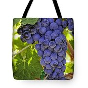 Red Wine Grapes Hanging On The Vine Tote Bag