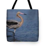 Reddish Egret Wading Texas Tote Bag