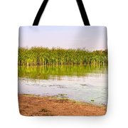 Reeds Close To The Shore Tote Bag