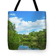 Reflection Of Trees And Clouds In South Tote Bag