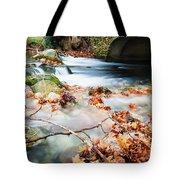 River Flowing Under Stone Bridge Tote Bag
