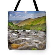 River San Juan  Tote Bag by Guido Montanes Castillo