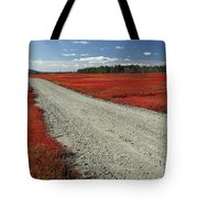 Road Through Autumn Blueberry Maine Tote Bag