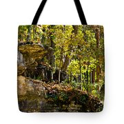 Rock Shelf And Forest Tote Bag