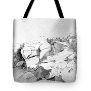 Rocks At Narragansett Tote Bag