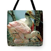 Roseate Spoonbill Adult With Young Tote Bag