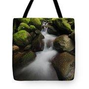 Ruckel Creek  Oregon, United States Tote Bag
