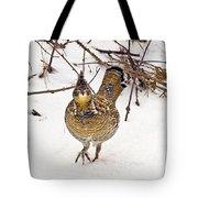 Ruffed Grouse Walking On Snow - Horizontal Tote Bag