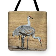Sand Hill Cranes Eating Tote Bag