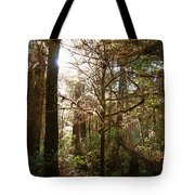 Save The Rain Forests Tote Bag