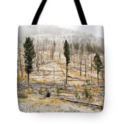 Sawback Burn, On Bow Valley Parkway Tote Bag