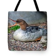 Scaly-sided Merganser Hen Tote Bag