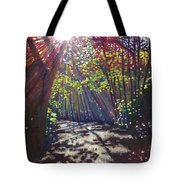 Scattered Light Tote Bag