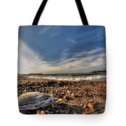 Sea Shell Sea Shell By The Sea Shore At Presque Isle State Park Series Tote Bag